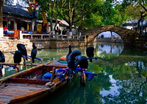 Tongli - GSV Travel